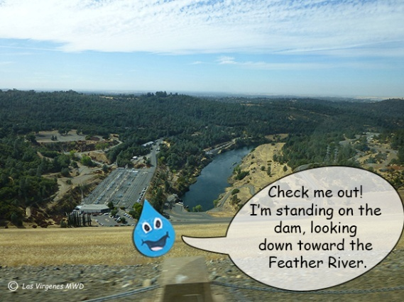 That's the Feather River, heading towards Sacramento