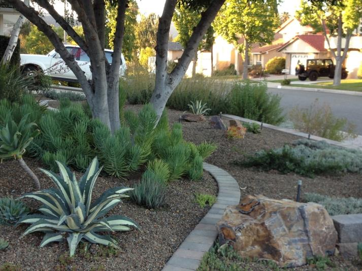 Front yard of Tami and Todd Weiner - Agoura Hills