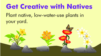 Get Creative with Natives
